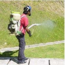 為客戶提供既安全又具果效的防蟲滅鼠及白蟻防治