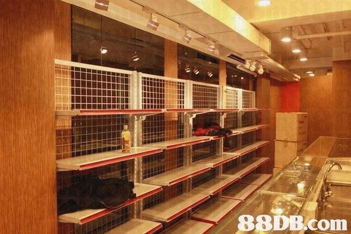 Property,Building,Room,Shelf,Furniture