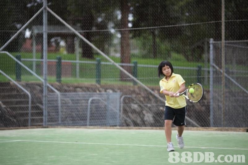 88DB.com  tennis