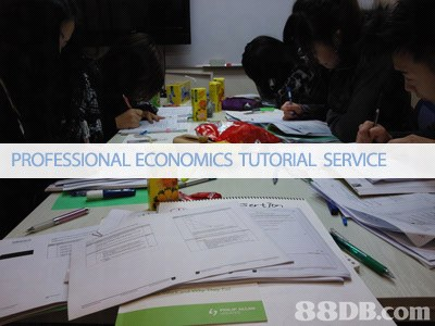 PROFESSIONAL ECONOMICS TUTORIAL SERVICE   learning,education,