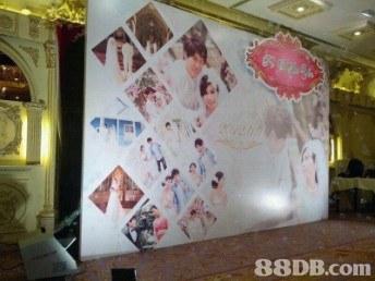 Wall,Room,Pink,Interior design,Wallpaper