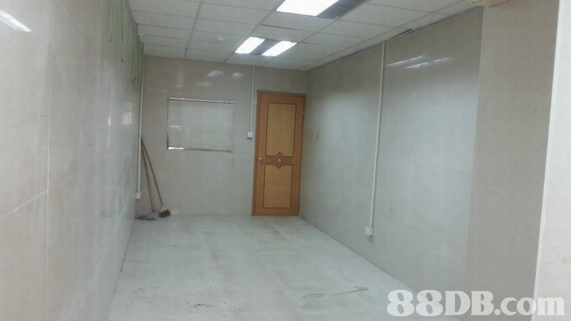 property,wall,real estate,area,floor