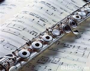 Western concert flute,Music,Woodwind instrument,Bass oboe,flute