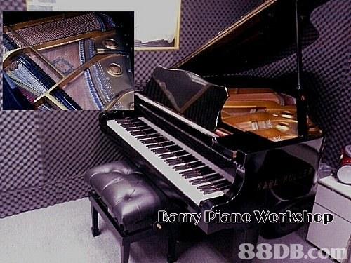 專業鋼琴工作室 (高質二手鋼琴專賣店) 專業鋼琴調音、維修、二手鋼琴回收免費上門報價 69738719 Barry Ho 何先生