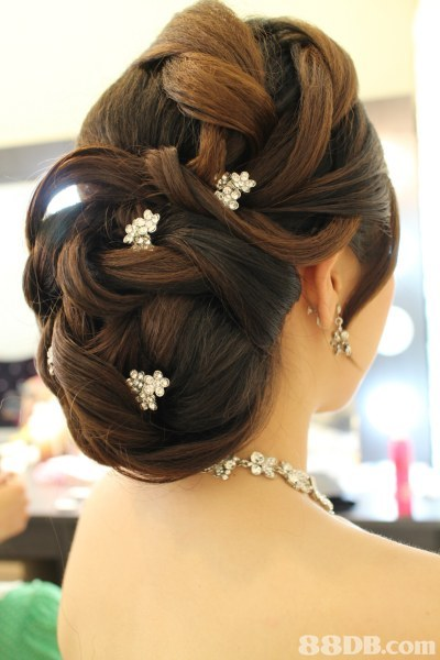 hair,hairstyle,headpiece,hair accessory,long hair
