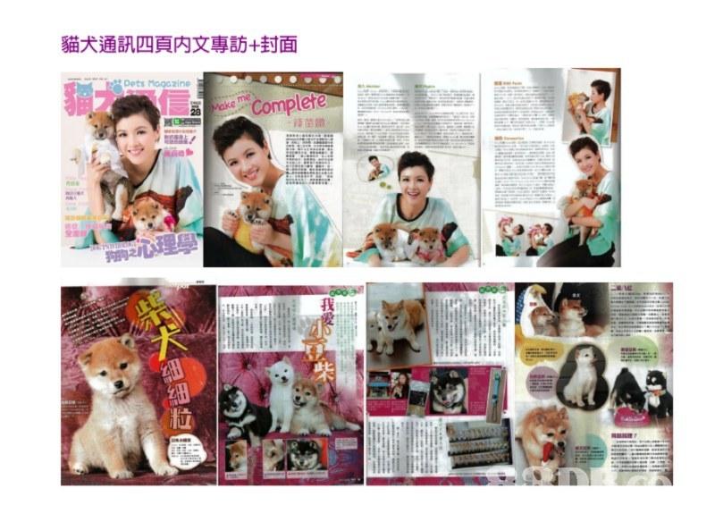 貓犬通訊四頁内文專訪+封面 Dets Magazine MakeComplefe 蹄茵媺 Iu,product,media,collage,