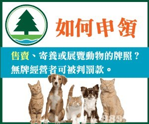 如何申領 售賣、寄養或展覽動物的牌照? 無牌經營者可被判罰款。 85  dog breed,cat,fauna,small to medium sized cats,dog