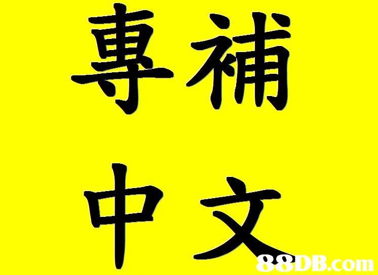 專補 中文 B.com  yellow