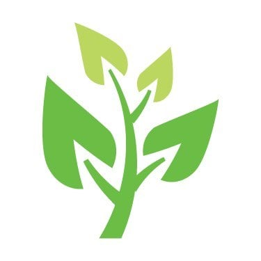 大自然樹藝有限公司- 風季、雨季來臨,為安全做足準備!專業檢查、修剪、移除、種植⋯⋯ 一站式樹木花園保養服務!