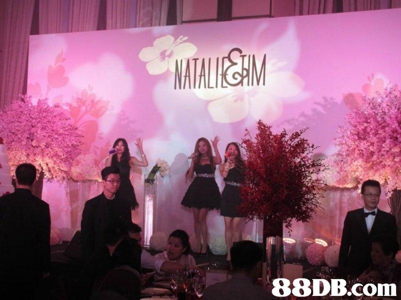 NATALIKSM   pink,function hall,entertainment,event,ceremony