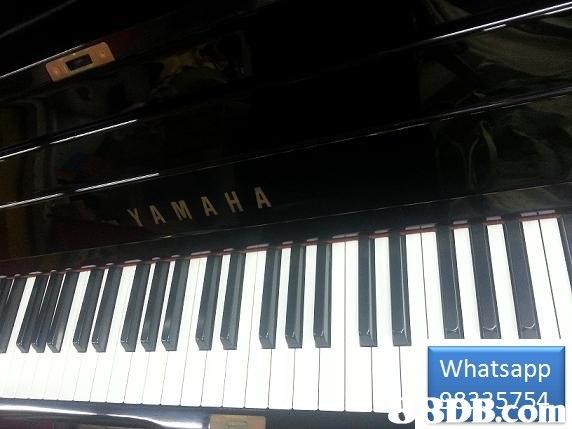 AMAH A Whatsapp  musical instrument