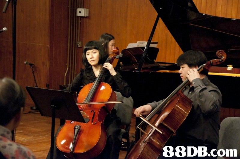 i/,music,cello,musician,string instrument,orchestra