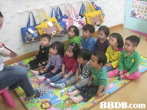 child,kindergarten,school,toddler,play