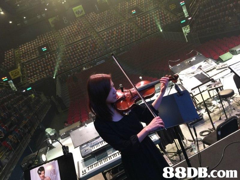 88DB.com  stage