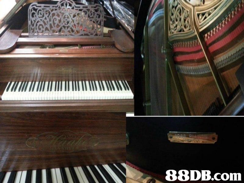 88DB.com  musical instrument