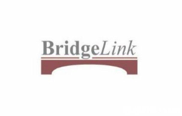 BridgeLink  text,white,logo,font,product