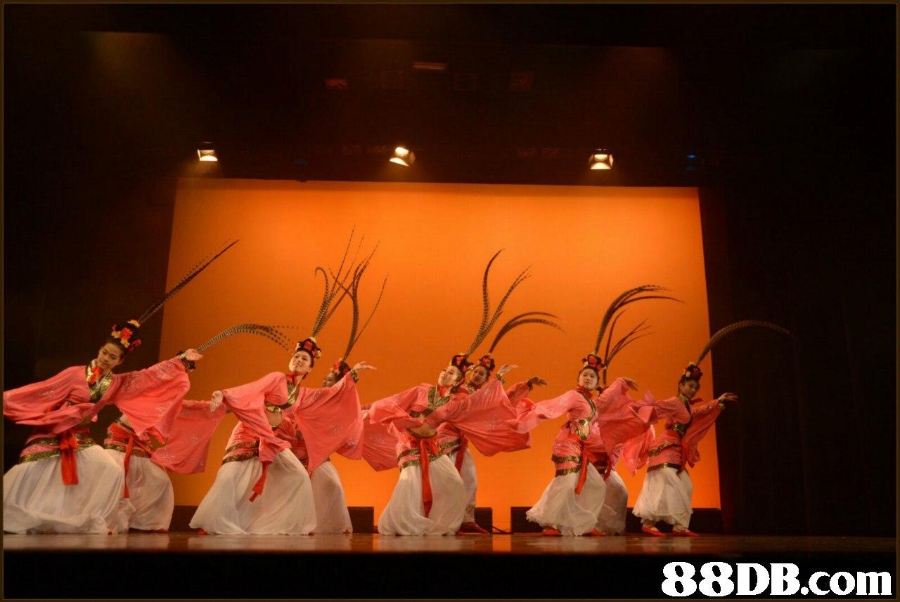 Entertainment,Performing arts,Folk dance,Performance,Dance