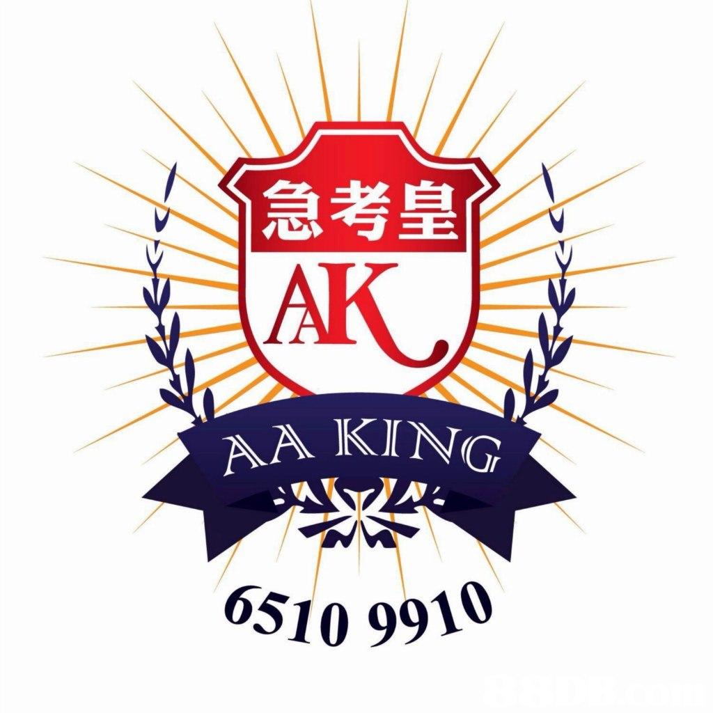急考皇 AK A KING 6S10 9910  logo