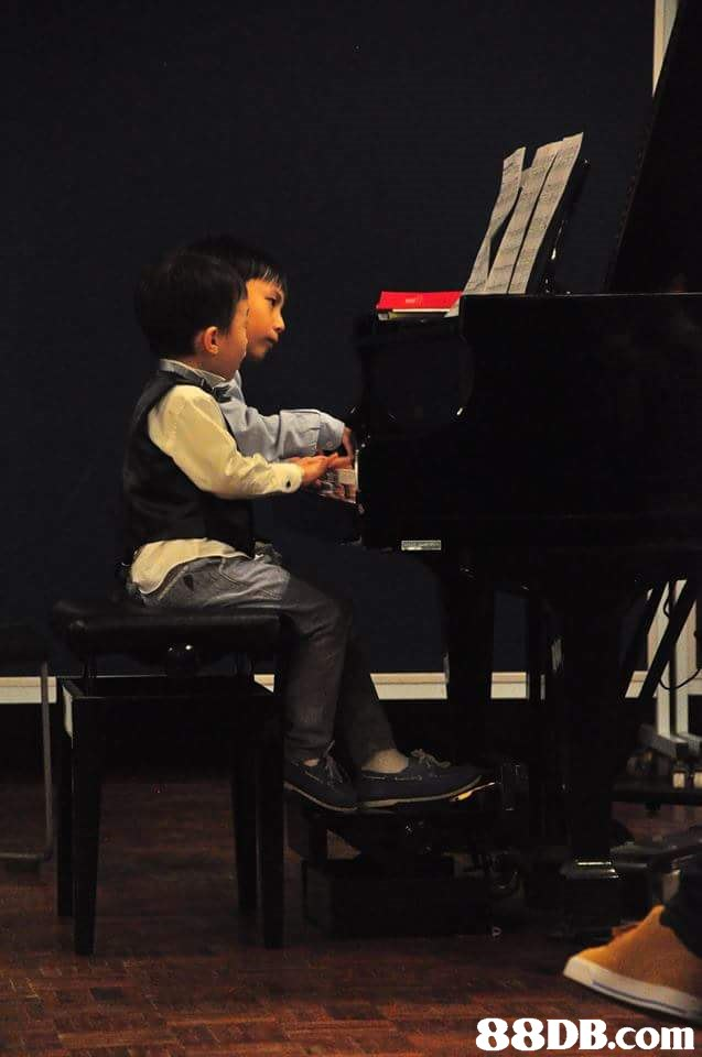 pianist,piano,music,musician,performance