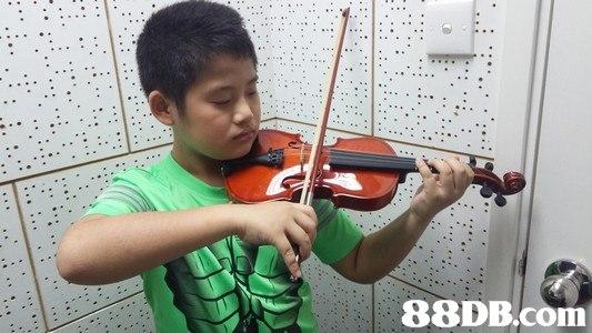 Violinist,Violin,Violist,Musical instrument,Viola