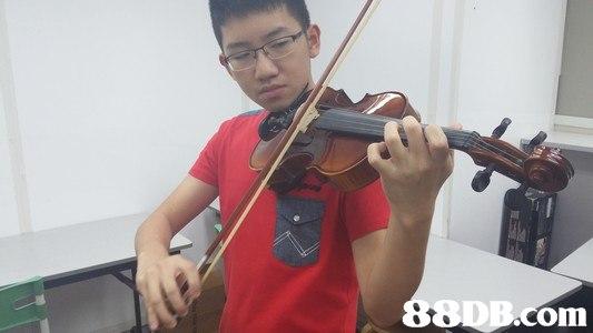 com,Violin,Violinist,String instrument,Musical instrument,Violist