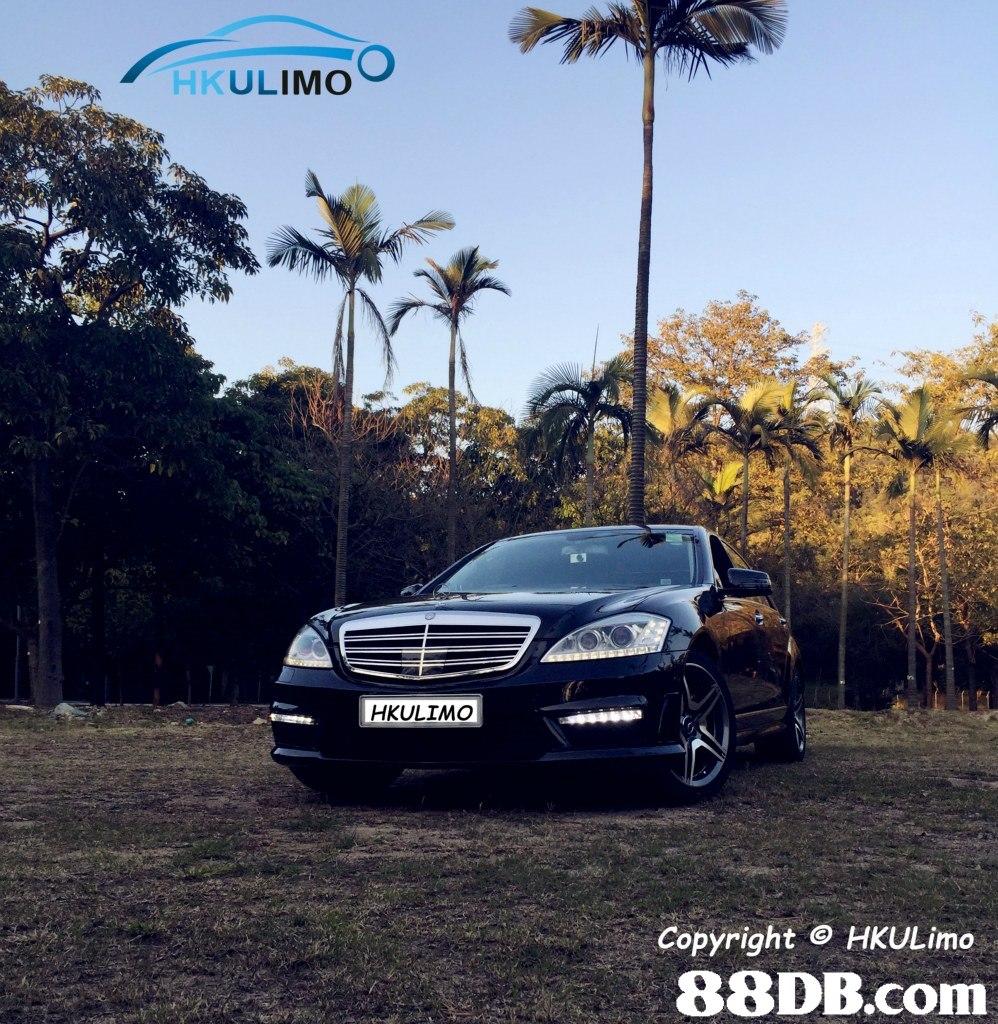 HKULIMO Copyright ⓒ HKULimo 88DB.com  car