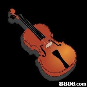 musical instrument,violin,string instrument,violin family,string instrument