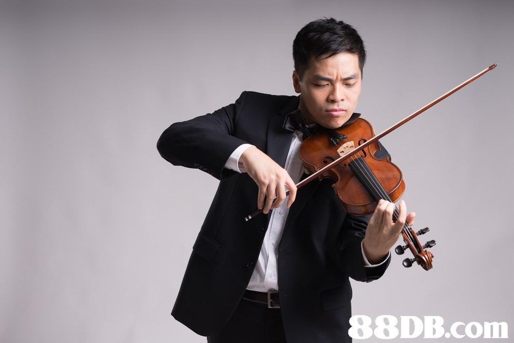 8DB.com,violin,violinist,violist,violin family,viola