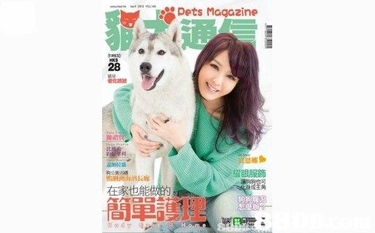 Dets Maqazine 28 耀眼服飾 在家也能 簡單護理  dog like mammal,product,
