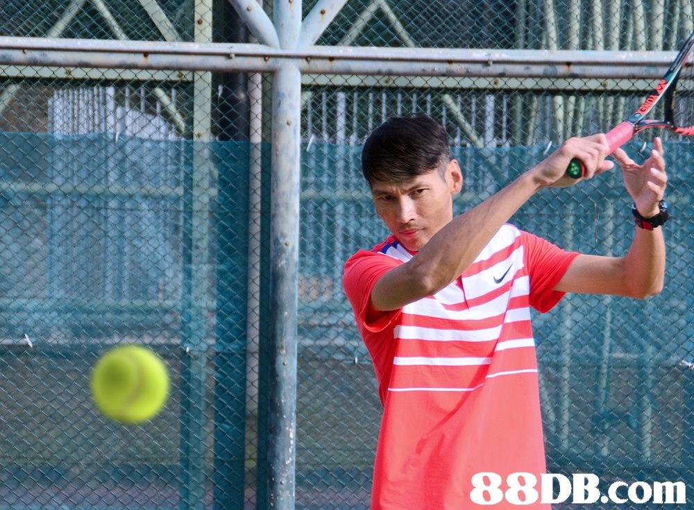 88DB.com  racquet sport