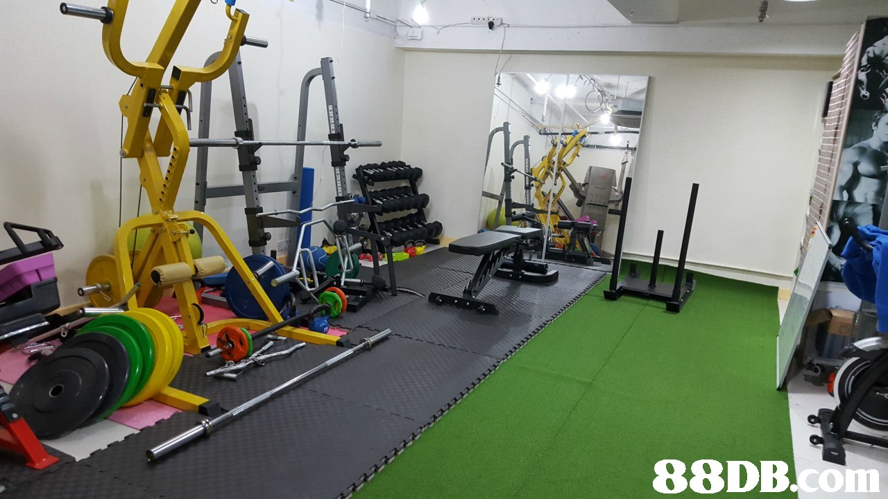 Gym,Room,Exercise equipment,Physical fitness,Sport venue