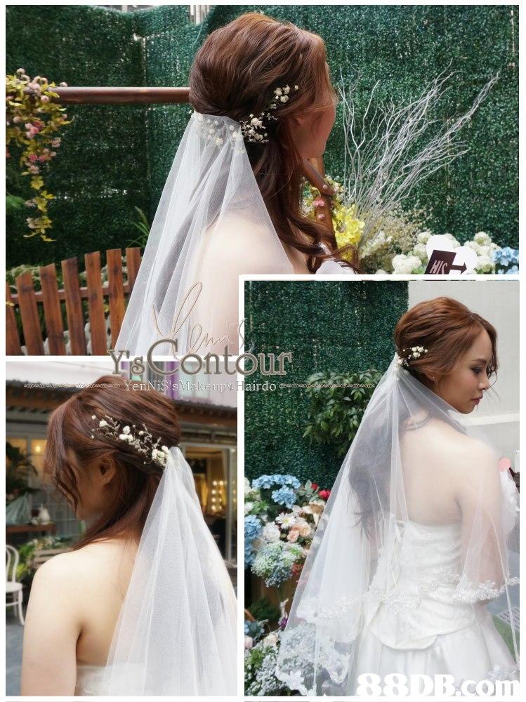 hair,veil,bridal veil,headpiece,hair accessory