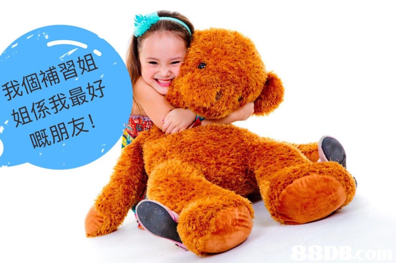 我個補習姐 姐係我最好 嘅朋友!  stuffed toy