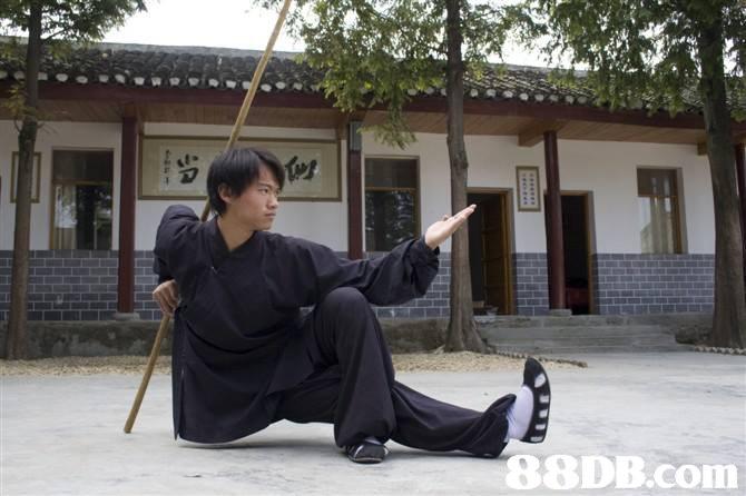Kung fu,Kenjutsu,Sōjutsu,Iaidō,Haidong gumdo