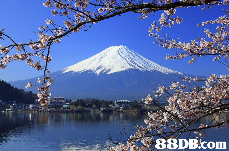 cherry blossom,sky,lake,mount scenery,tree