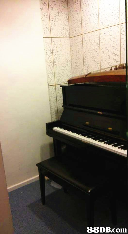 Piano,Musical instrument,Fortepiano,Electronic instrument,Keyboard