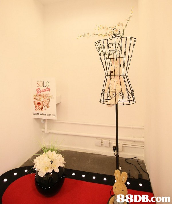 SOLO Beauty LEASING hatine 2910783   Lampshade,Room,Light fixture,Lighting accessory,Interior design