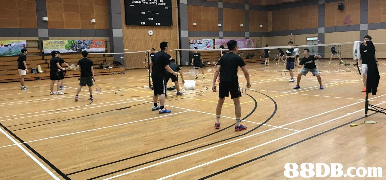 CHEUNG CHAU SPORTS CENTRE 2017   Badminton,Sports,Sport venue,Tournament,Sports equipment