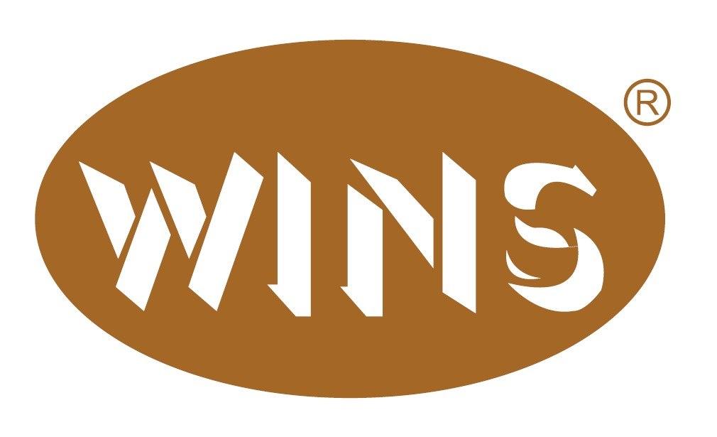 WINS  text,font,logo,circle,line