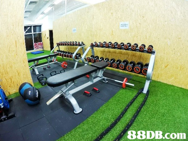 The Park Fitness 荃灣 街頭健身 健身室 PT 瑜珈 YOGA HIIT 拍攝 攝影