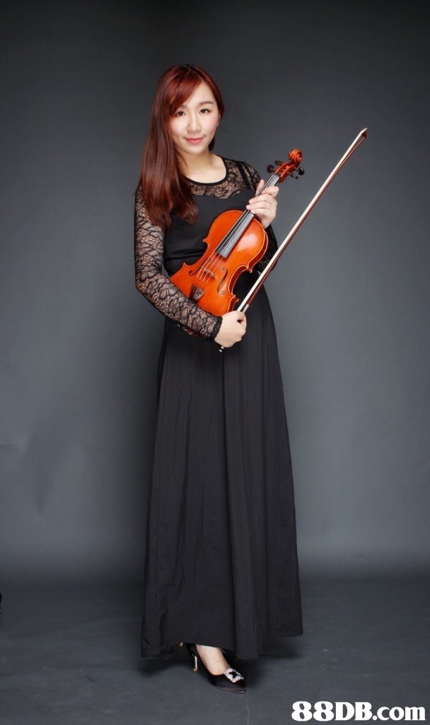 88DB.com  violinist