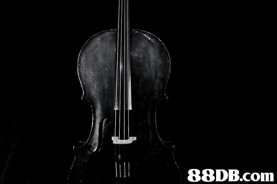 String instrument,String instrument,Bowed string instrument,Cello,Tololoche