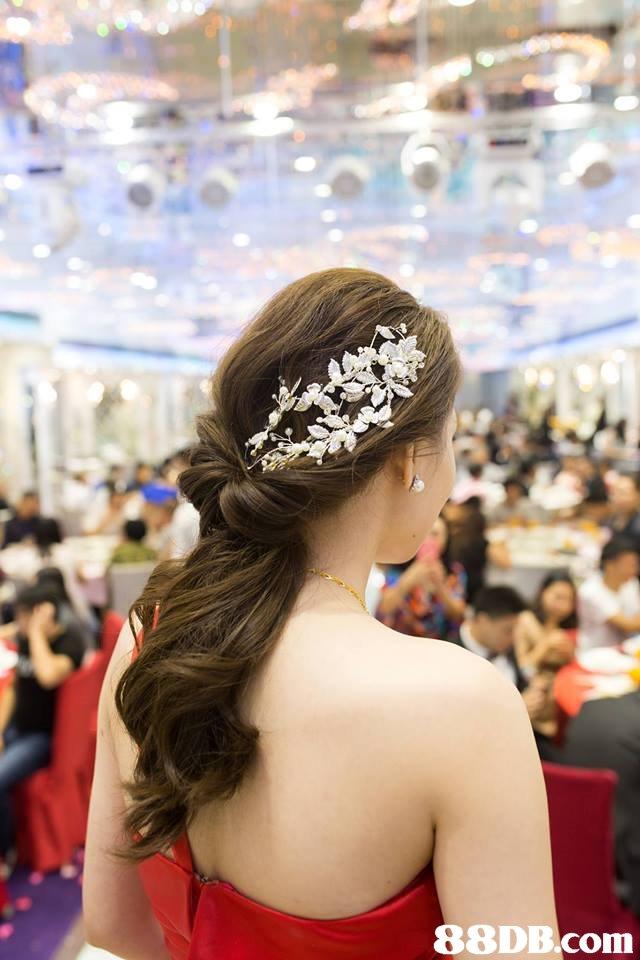 hair,hair accessory,headpiece,hairstyle,fashion accessory