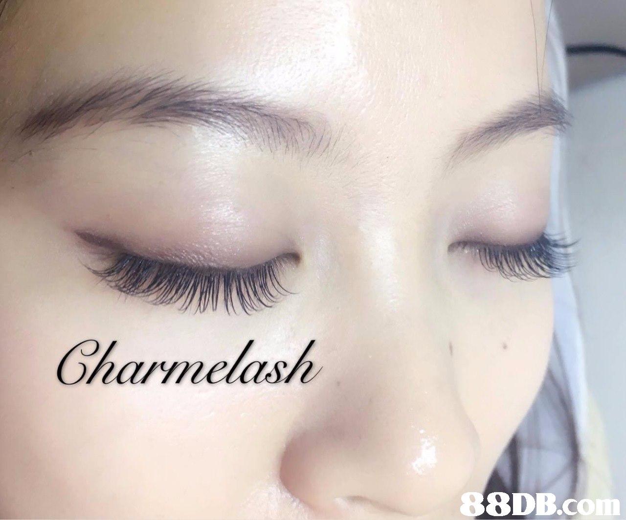 Gharmelash 8DB.com  eyebrow,eyelash,beauty,nose,eye