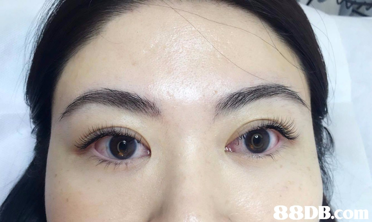 88DB.o  eyebrow,forehead,eyelash,cheek,eye