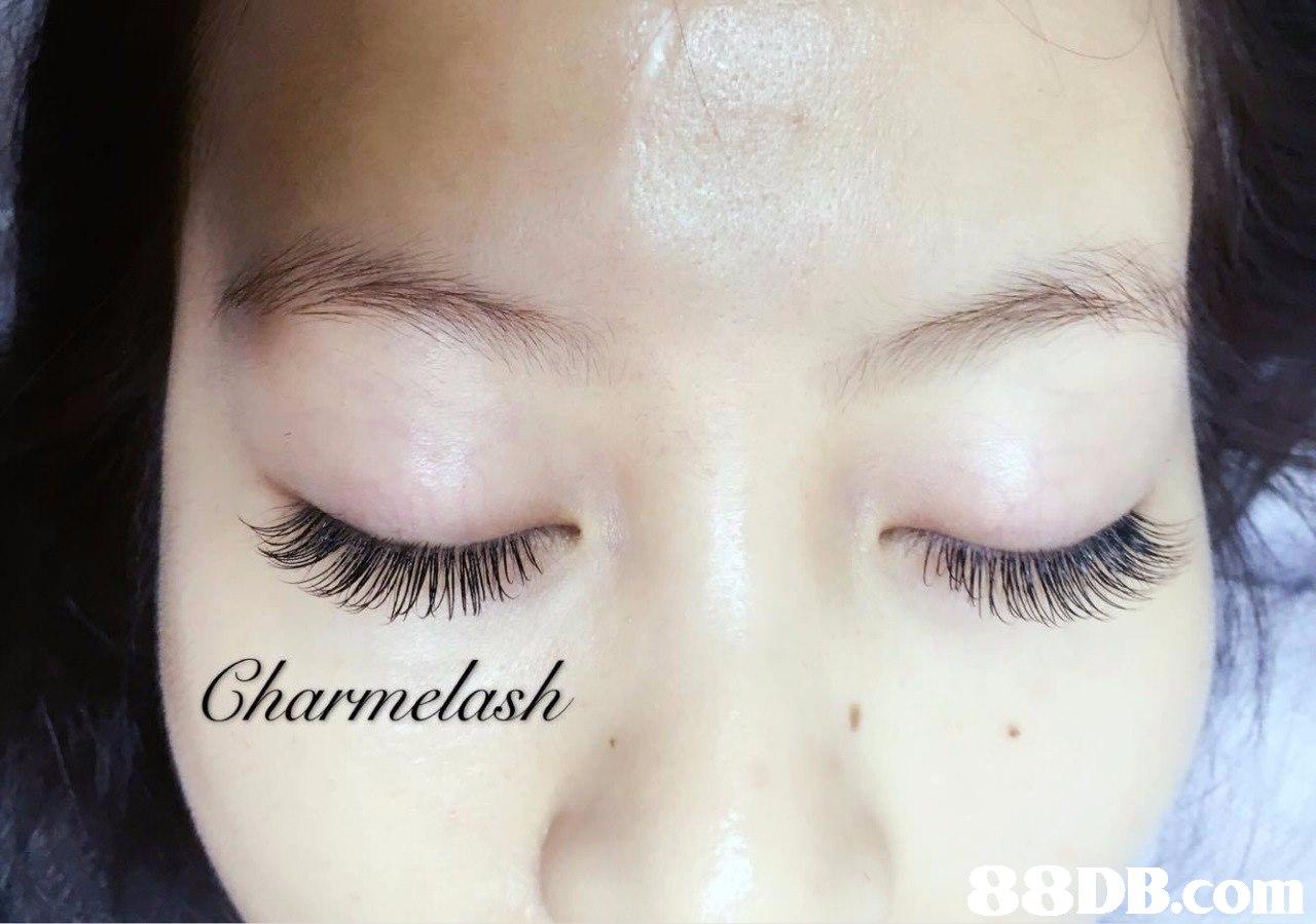harynelash DB.com  eyebrow,eyelash,eye,forehead,cheek