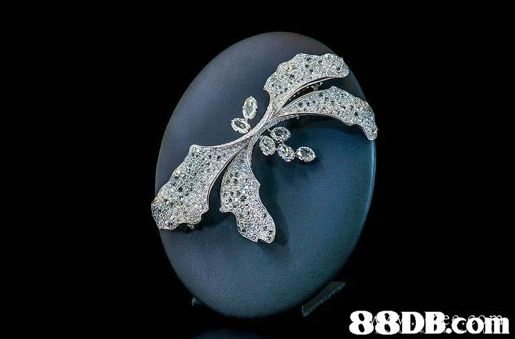 88DB.com  jewellery