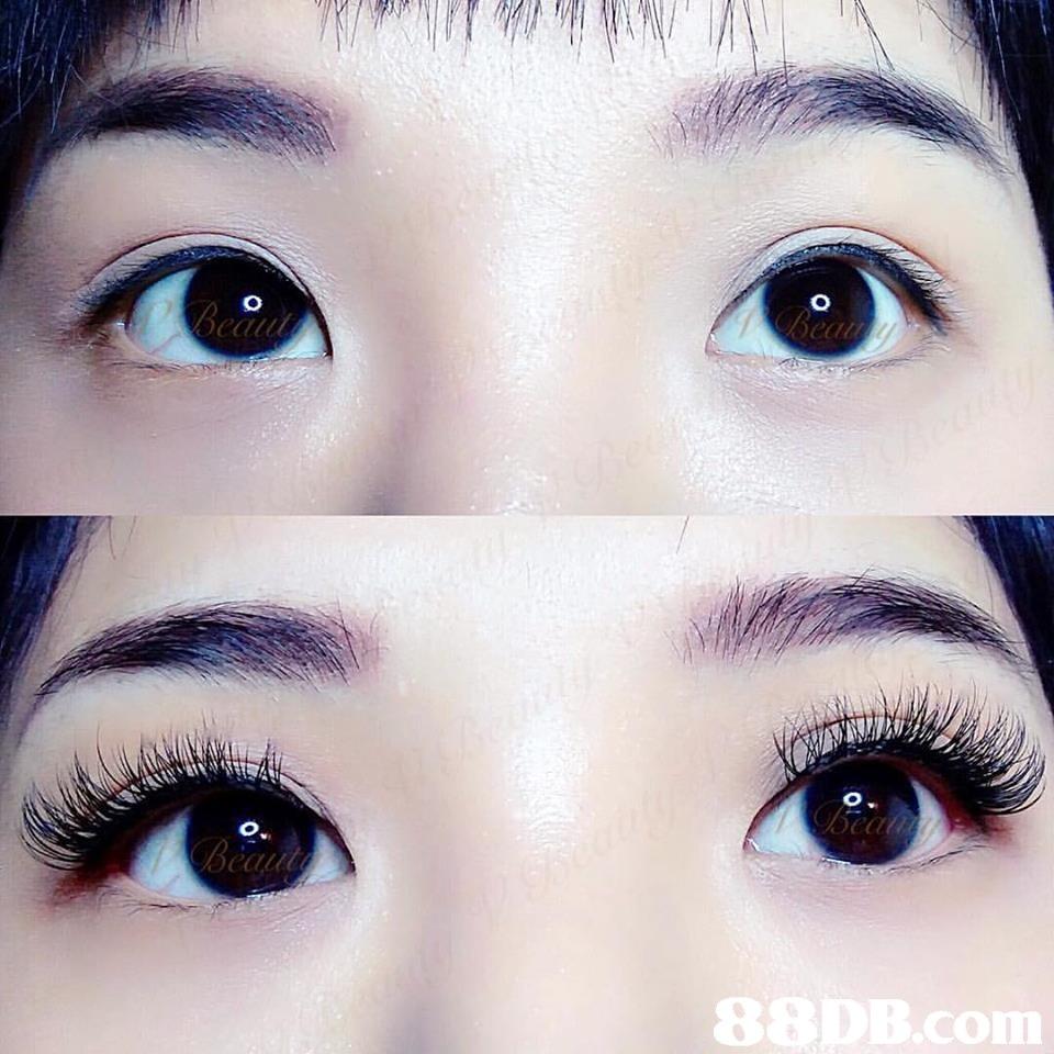 au 8 conn  eyebrow,eyelash,nose,eye,forehead