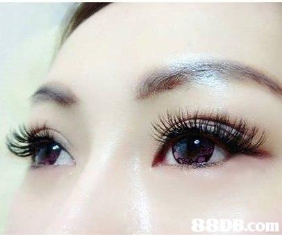 8 com  eyebrow,eyelash,eye,close up,eye shadow