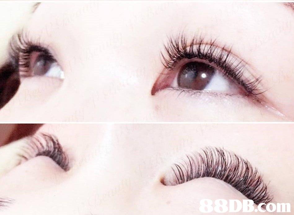 DB COm in  eyebrow,eyelash,eye,cosmetics,close up